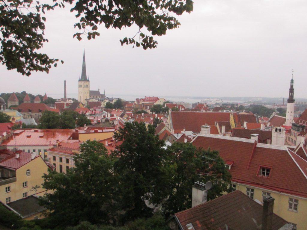 Вид с крепости Вышгорода на Таллин