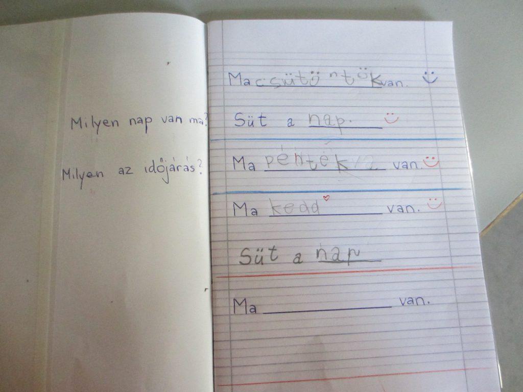 Рабочая тетрадь ученика подготовительного класса. Ребенок семи лет с аутизмом.